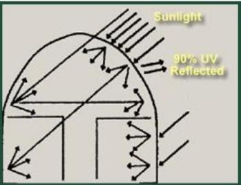 Simply Solar Greenhouse - Sunlight - 90% UV Reflected
